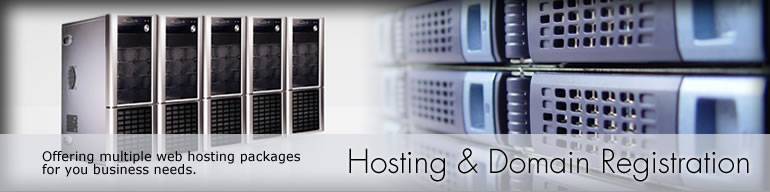 Web Hosting Solutions. In addition to designing your web site we can also